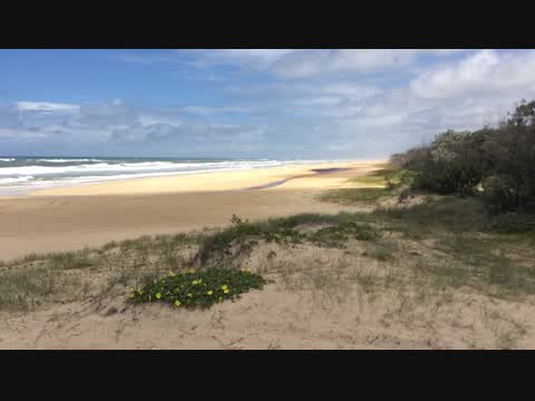Fraser Island and four-wheel-driving
